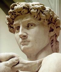 David di Michelangelo: particolare